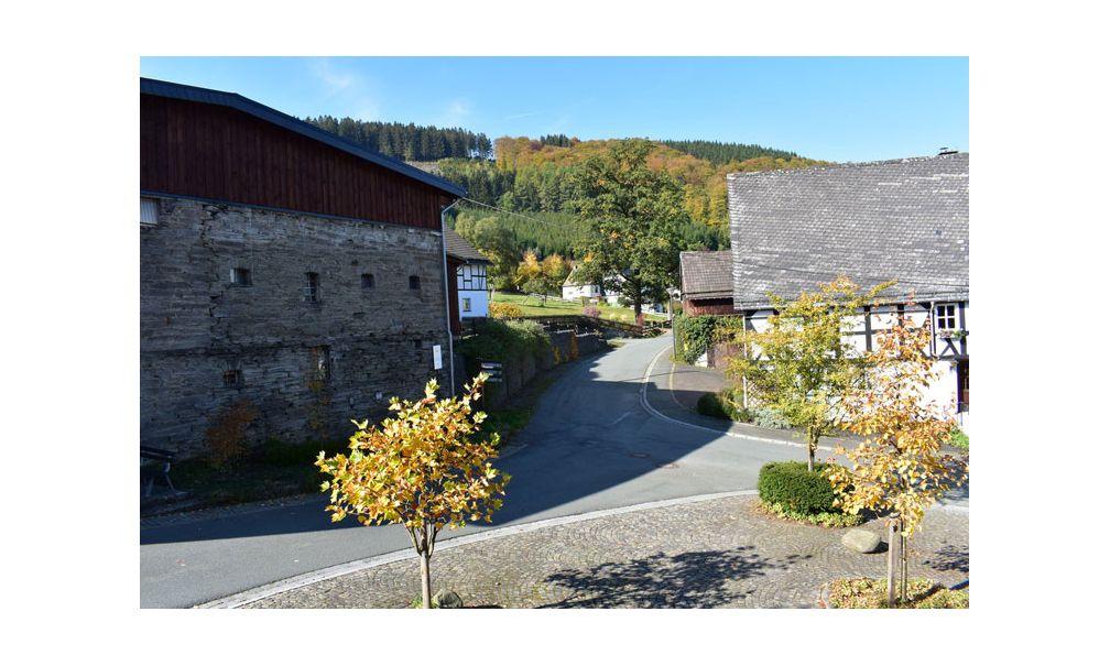 Natuurhuisje in Schmallenberg 53156 - Duitsland - Noordrijn-westfalen - 6 personen