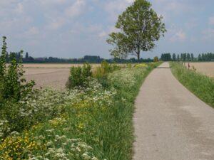 Natuurhuisje in Ovezande 53249 - Nederland - Zeeland - 2 personen
