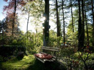 Natuurhuisje in Wapenveld 30647 - Nederland - Gelderland - 4 personen